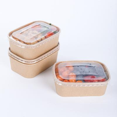 Disposable paper container with rounded corners